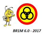 Search BR1M 6.0 – 2017
