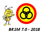 Search BR1M 7.0 – 2018
